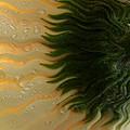Waves Of Joy by Krissy Katsimbras