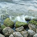 Waves On Mossy Rocks 2 by Deborah Smolinske