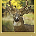 Way To Go Dad Congratulations On A Successful Deer Hunt by Michael Peychich