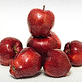 We Are Family - 6 Red Apples - Fresh Fruit - An Apple A Day - Orchard by Andee Design
