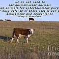 We Do Not Need To Eat Animals by Janice Rae Pariza
