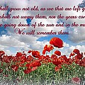 We Will Remember Them... by The Creative Minds Art and Photography