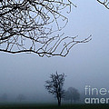 Weather by V Waddingham