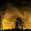 Weather Warning by LeeAnn McLaneGoetz McLaneGoetzStudioLLCcom