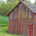 Weathered Barn by CJ Middendorf