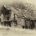 Weathered Barn  by Harold Rau