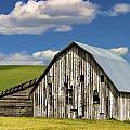 Weathered Barn Palouse by Carol Leigh