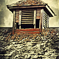 Weathered Cupola by Julie Hamilton