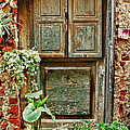 Weathered Door by Allen Beatty