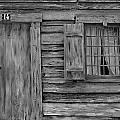 Weathered Door And Window 1 by Denise Mazzocco