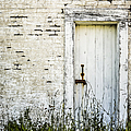 Weathered Door by Diane Diederich