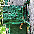 Weathered Green Paint by Paul Ward