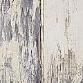 Weathered Paint On Wood by Tim Hester