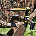 Weathered Tap And Barrel by Paul Ward