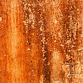 Weathered Wall 04 by Rick Piper Photography