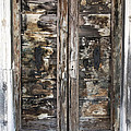 Weathered Wood Door Venice Italy by Sally Rockefeller