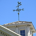 Weathervane Horse by Don Baker