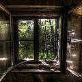 Web Window by Nathan Wright