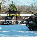 Webster Park Sign by Lou Cardinale
