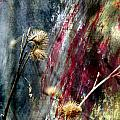 Weed Abstract Blend 1 by Anita Burgermeister