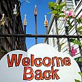 Welcome Back by Ed Weidman