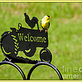 Welcome by Linda Galok