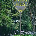 Welcome To Beverly Hills by Mountain Dreams