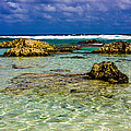 Welcome To Cozumel by Sara Frank