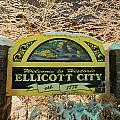 Welcome To Ellicott City by Dana Sohr
