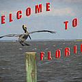 Welcome To Florida by Wynn Davis-Shanks