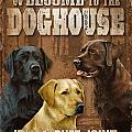 Welcome To The Dog House by JQ Licensing