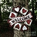 Welcome With Love by Diane Macdonald