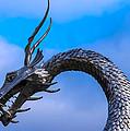 Welsh Dragon Head by Robert Edgar
