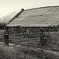 Welsh Farm Building by Fran Gallogly