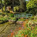 Welsh Garden by Adrian Evans