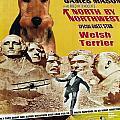 Welsh Terrier Art Canvas Print - North By Northwest Movie Poster by Sandra Sij