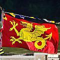 Wessex Wyvern Flag by Susie Peek