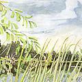 West Bay Napanee River by John Herzog