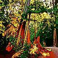 West Coast Rainforest by John Malone