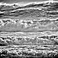 West Coast Waves by Roxy Hurtubise