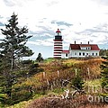 West Quoddy 4041 by Joseph Marquis