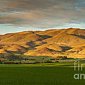 West Side Of Squaw Butte by Robert Bales