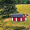 West Virginia 2 by Steve Harrington
