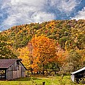 West Virginia Barns  by Steve Harrington