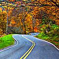 West Virginia Curves 2 Oil by Steve Harrington