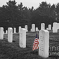 West Virginia National Cemetery by Jim West