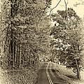West Virginia Wandering Sepia by Steve Harrington