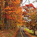 West Virginia Wandering by Steve Harrington