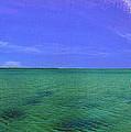 Western Australia Busselton Jetty by David Zanzinger