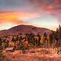 Western Barn At Sunset II by Michele Steffey